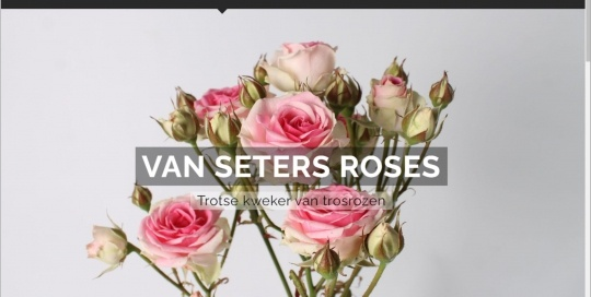 Setersroses.nl