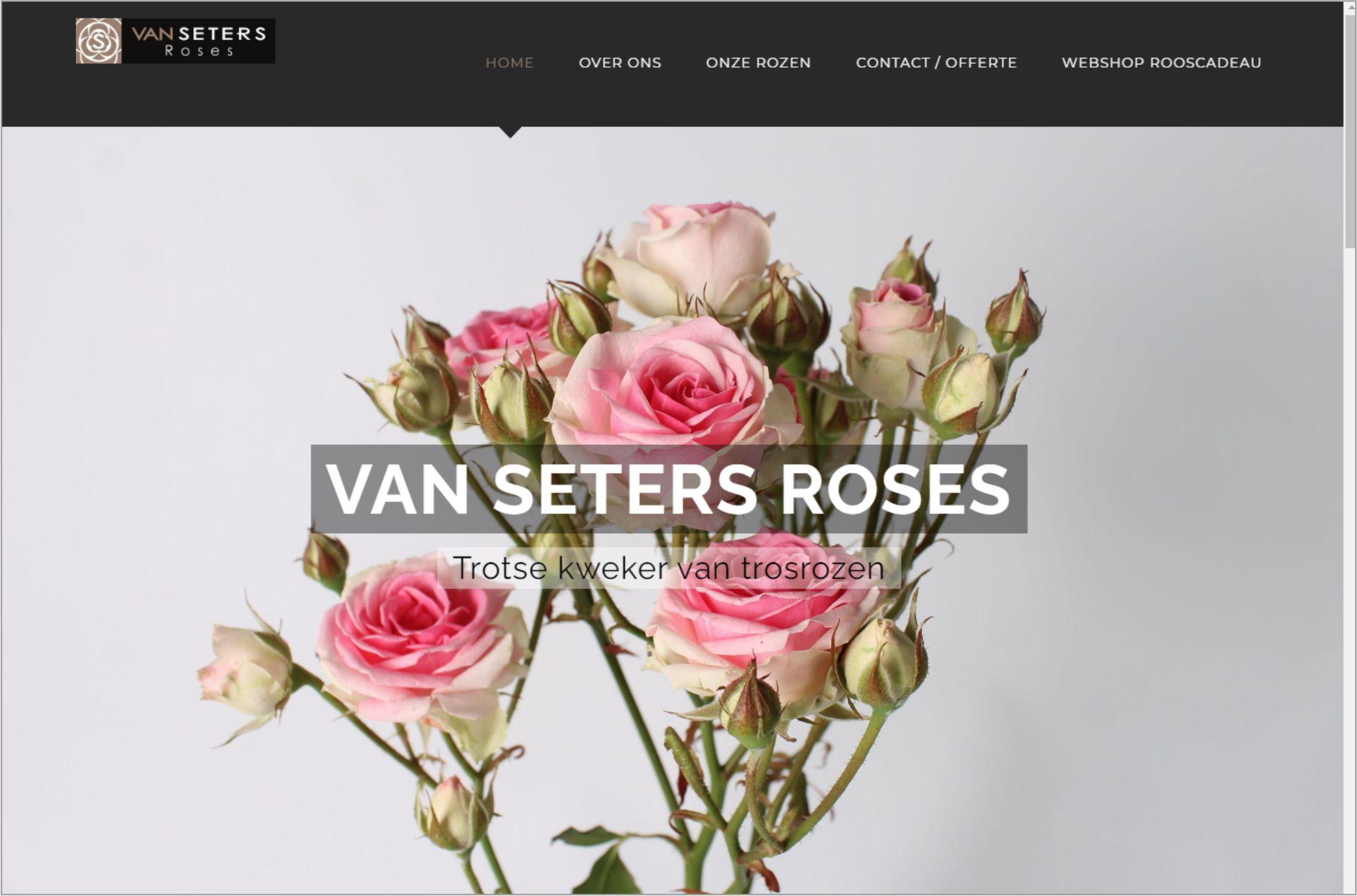 van Seters Roses